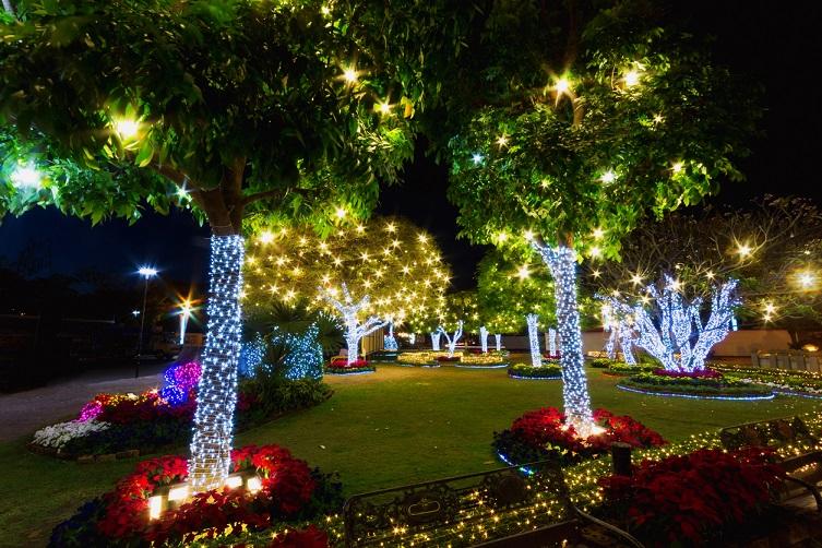 Oświetlenie świąteczne Zewnętrzne Led Na Dom Newled